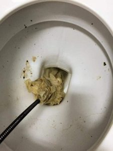 flushable wipes cleared from McDonalds Helensvale by Whywait Plumbing